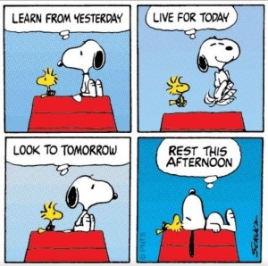 TAOLife-Snoopy-Live-for-today