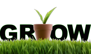 grow-your-business-using-lead-nurturing